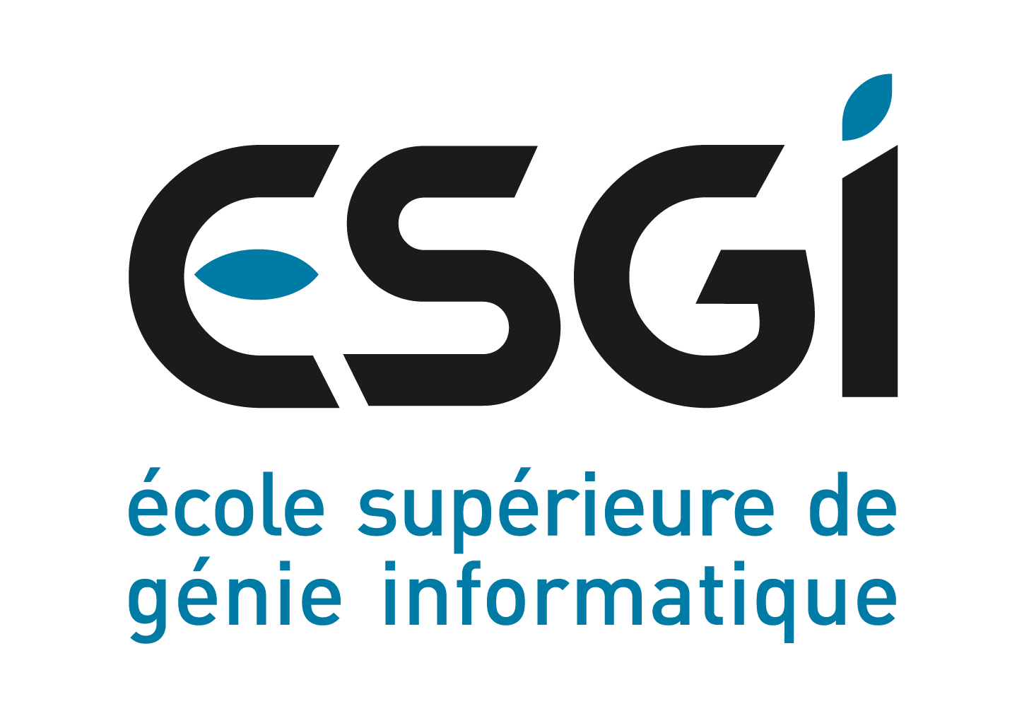 Ecole Supérieure de Génie Informatique (ESGI)